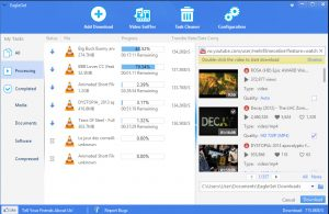 EagleGet 2.0.4.22 Free Download For Windows 2017